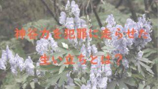神谷力が利用したトリカブトの花