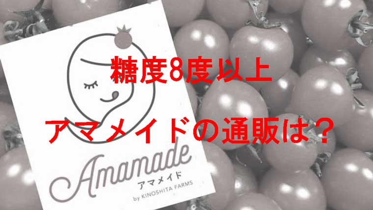 アマメイドのミニトマト