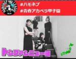 トンファンニューヨのメンバー