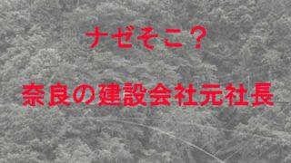 奈良の吊り橋に元社長が立つ